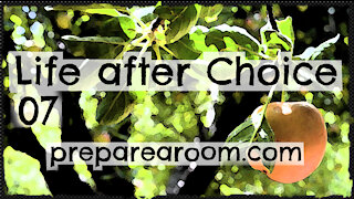 Life after Choice Video 07 - Almost-Abortion