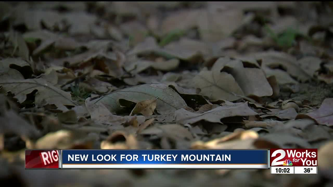 A new look for Turkey Mountain coming soon