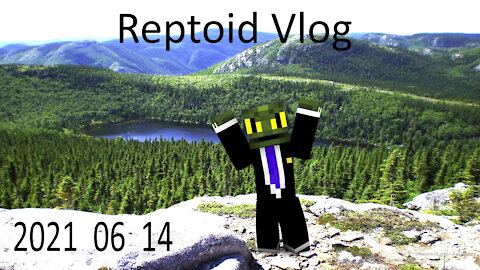Reptoid Vlog 2021 06 14 - Moving forward with the weirdest lizard you know.