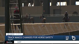Track makes changes for horse safety