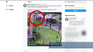 DPD respond to video of officer shooting dog