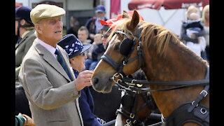 Prince Philip has undergone a 'successful procedure'