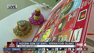 Hidden gem of Southwest Florida: Keewaydin Island - 7:30am live report