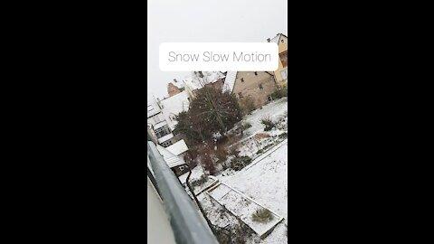 Snow Slow Motion Hd