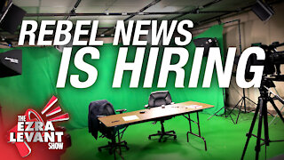 Rebel News is growing — want to join the team?