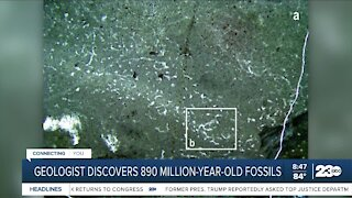 Geologist discovers 890 million-year-old fossil
