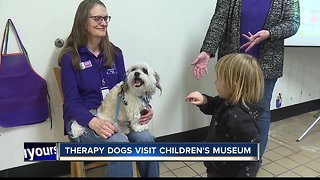 Therapy dogs visit Children's Museum of Idaho