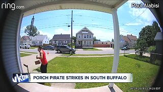 Porch pirate strikes in South Buffalo
