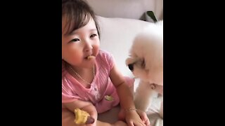 Pup steals snack away from little girl
