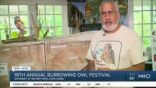 18th Annual Burrowing Owl Festival in Cape Coral