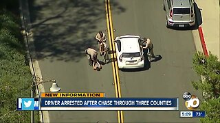 Driver arrested after three-county chase