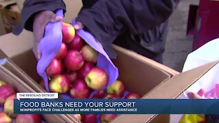 Metro Detroit food banks in need of volunteers as food insecurity grows during COVID-19 pandemic