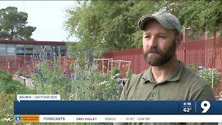 Growing interest in Tucson community gardens