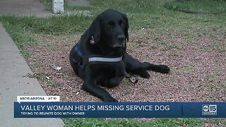 Valley woman helps missing service dog
