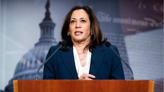 Kamala Harris Could Be First Female VP Of Color