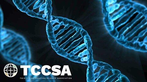 Genetic Entropy - Alan K. Walker
