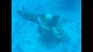 John Pennekamp Coral Reef State Park and Keys