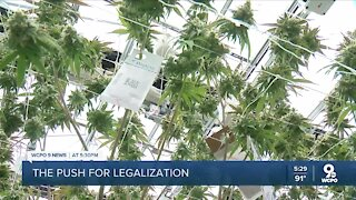 Recreational marijuana legalization could be back on the table for Ohio