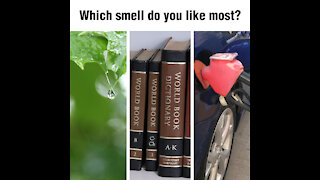 Which smell do you like most [GMG Originals]