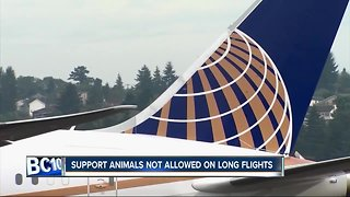 United's new rule for support animals takes effect