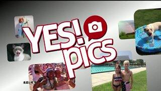 Yes! Pics - 8/3/20
