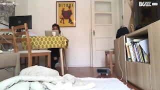 Jovem joga às escondidas com a sua cadela
