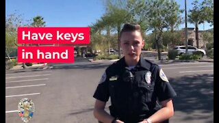 Southern Nevada police agencies reminding people about package thefts