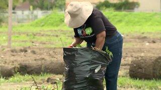 Local organization continues community cleanup despite pandemic