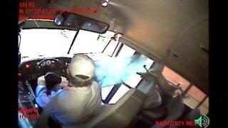 Deer crashes through windshield of bus in Virginia