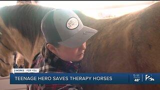 TEENAGE HERO SAVES THERAPY HORSES