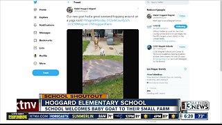 SCHOOL SHOUTOUT: Hoggard Elementary