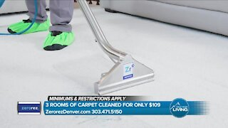MHL // Zerorez Long Term Carpet Cleaning
