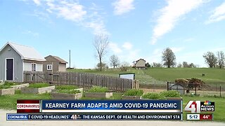 Kearney farm adapts amid COVID-19 pandemic