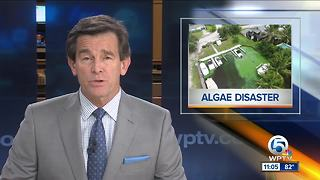Federal loans available for small businesses affected by toxic algae