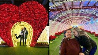 This Breathtaking Holiday Light Festival Will Illuminate Halifax Next Month