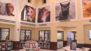 Peggy Adams Animal Rescue League unveils new pet adoption center