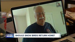 Should snow birds return home?