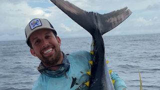 Giant Tuna!!