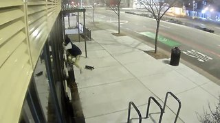 Surveillance video of suspect breaking into Project Green Light business