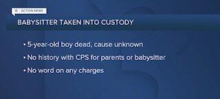 Babysitter taken into custody after child's death