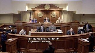 Alabama Senate Gets Into Shouting Match During Abortion Bill Debate