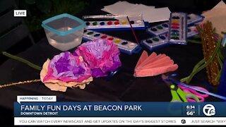 Family Fun Days at Beacon Park