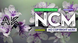 EDM Power BY [AK-NoCopyrightMusic Release]