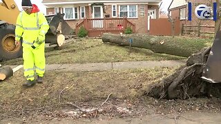 Powerful winds cause damage across WNY