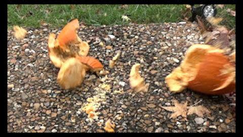 Slow Motion Smashing Pumpkins