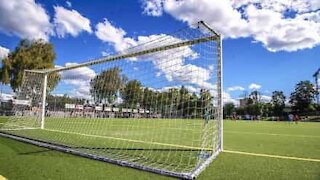 Dog hurtles into goal net while chasing ball