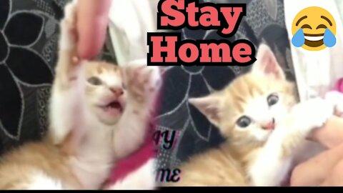 My cat & me in carantine 😍🤪👻