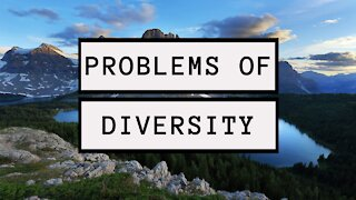 The Problem With Diversity