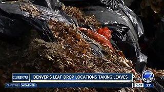 Denver's Leaf Drop locations taking leaves