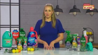 Spring Cleaning Tips | Morning Blend